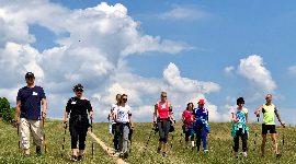 Nordic walking kurz, Fyzio I. a II. pro fyzioterapeuty, cvičitele a lékaře, Brno, 16.-17.6. 2018
