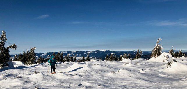 Na sněžnicích, zima 2019