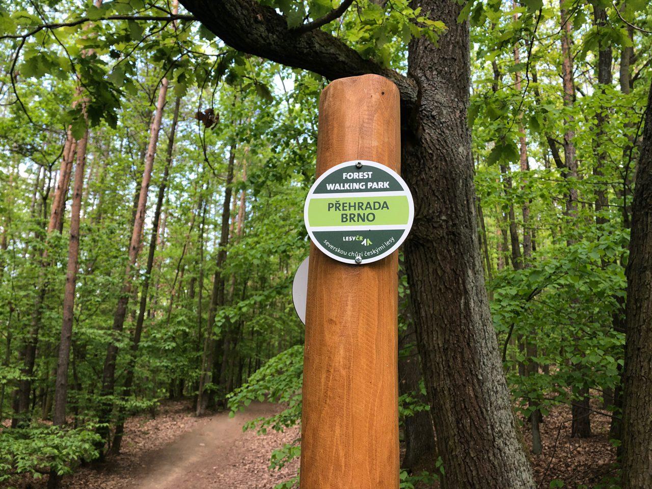 Forest walking park – u Brněnské přehrady