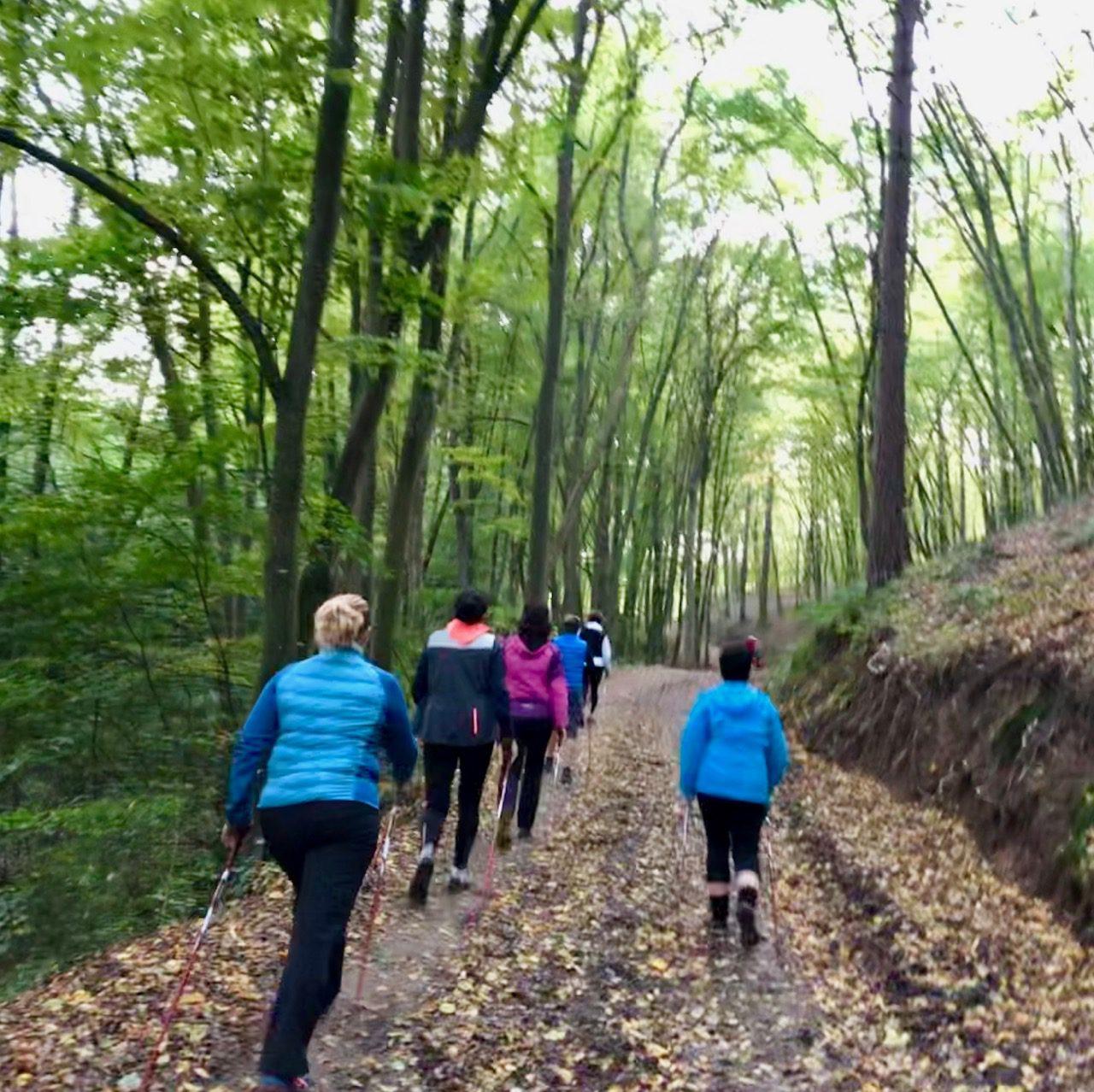 10/8L kondičních nordic walking, 09-11, 2019