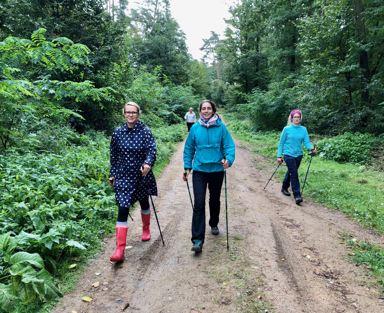 Mezinárodní Forest Therapy Days (IFTD), Brno 26.-27.9. 2020